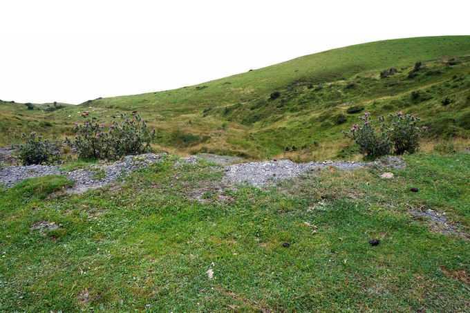 山坡上的青青大草原高山草甸8277471png免抠图片素材