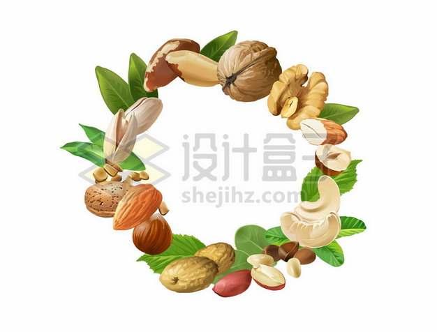 各种美味坚果组成的圆圈文本框信息框标题框装饰1847825矢量图片免抠素材