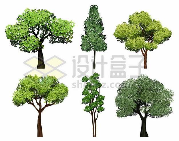6款郁郁葱葱的大树绿树9639958矢量图片免抠素材免费下载
