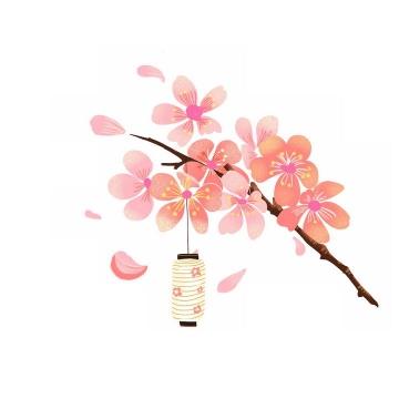 枝头上的粉红色桃花和花瓣灯笼装饰png图片免抠素材