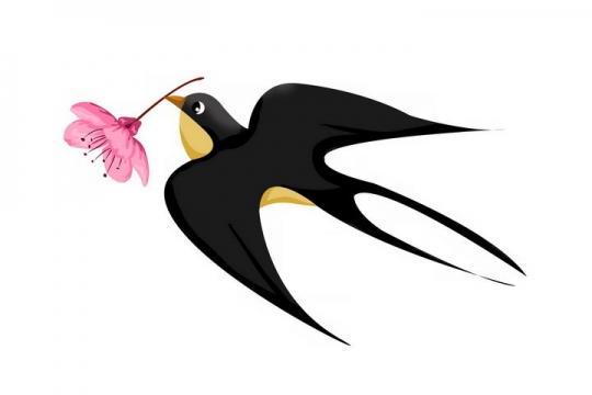 嘴里衔着粉色桃花的燕子png图片免抠素材