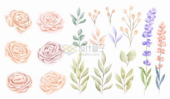 素雅风格玫瑰花花朵和叶子png图片免抠矢量素材