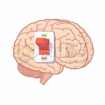 大脑上的开关按钮902023png矢量图片素材