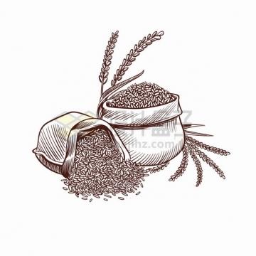装袋子里的小麦粮食手绘插画png图片素材