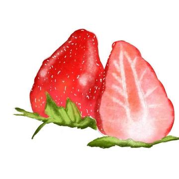 鲜红的手绘涂鸦风格草莓水果图片免抠素材