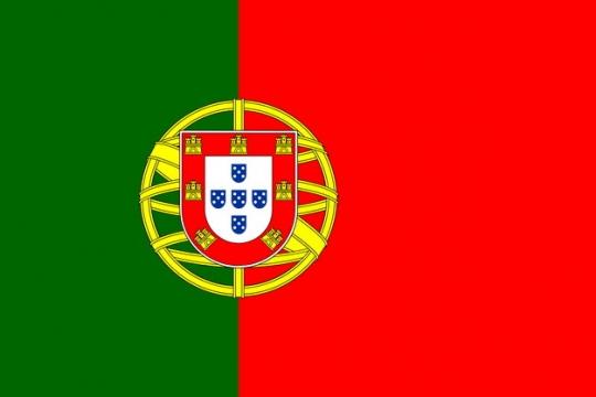 标准版葡萄牙国旗图片素材
