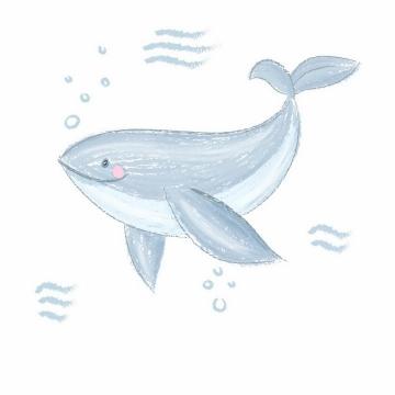 彩绘涂鸦风格可爱的卡通鲸鱼png图片免抠矢量素材