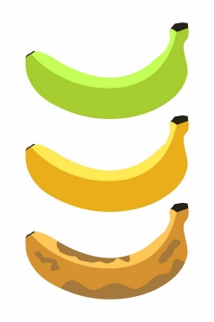 从青香蕉变成烂香蕉png图片免抠矢量素材