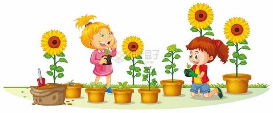 可爱小朋友在花盆里种植向日葵太阳花png图片素材