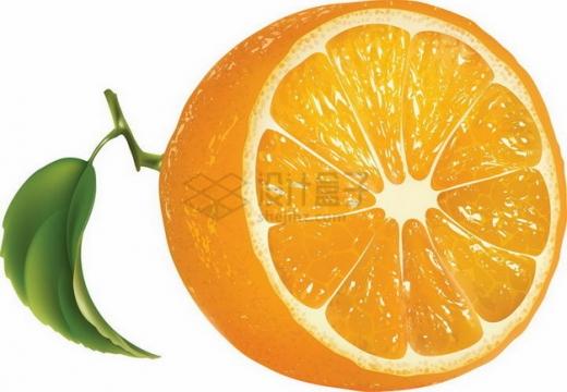 切开的橙子永兴冰糖橙png图片素材