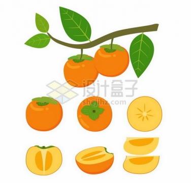 挂载枝头上的柿子和切开的柿子美味水果png图片免抠矢量素材