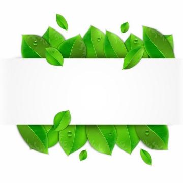 绿油油的树叶和长方形白色背景框png图片免抠矢量素材