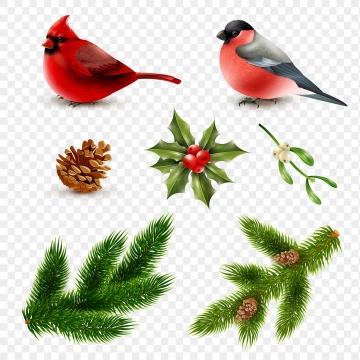 逼真的小鸟松枝松果等圣诞节装饰图片免抠素材