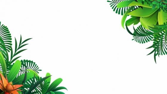 热带绿叶树叶装饰978065png图片素材