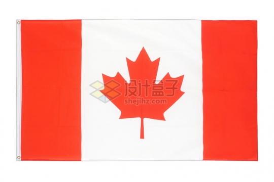 加拿大国旗枫叶旗png图片素材