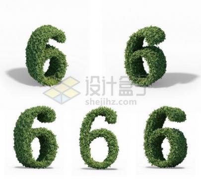 5个不同角度的植物修剪造型数字6艺术字体520443psd/png图片素材