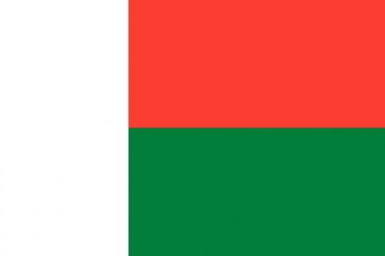 标准版马达加斯加国旗图片素材