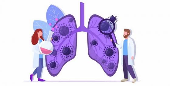 扁平插画两个身穿白大褂的医生正在研究肺部中的新型冠状病毒png图片免抠矢量素材
