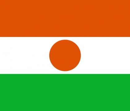 标准版尼日尔国旗图片素材