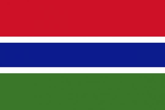 标准版冈比亚国旗图片素材