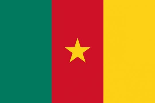 标准版喀麦隆国旗图片素材