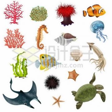 红珊瑚小丑鱼海马海螺水母海带乌贼海龟海胆蝠鲼魔鬼鱼等海洋鱼类526230png矢量图片素材