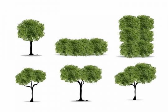6款修剪好的园林园艺树木大树绿树盆景树png图片免抠矢量素材