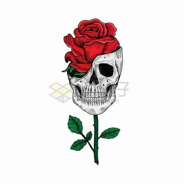 抽象骷髅头中长出了一朵红色的玫瑰花png图片免抠矢量素材