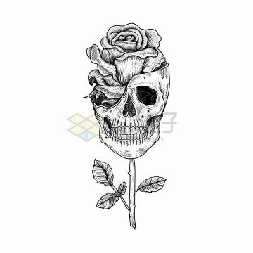 黑色素描风格骷髅头中长出了一朵玫瑰花png图片免抠矢量素材
