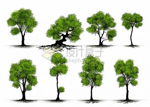 8款不同造型的绿色大树828647png矢量图片素材