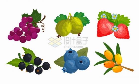 葡萄石榴草莓蓝莓等美味水果png图片免抠矢量素材