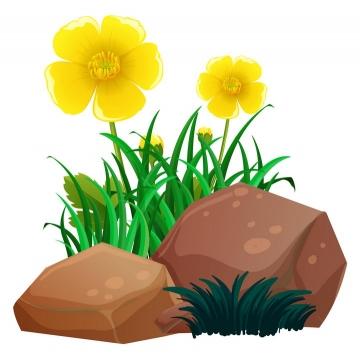 石头和五个花瓣的黄花花朵图片免抠矢量素材