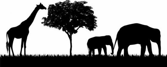 非洲大草原草地上吃树叶的长颈鹿和大象非洲野生动物剪影png图片免抠矢量素材