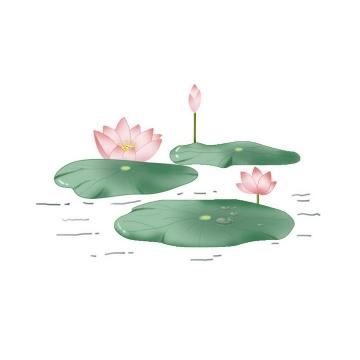 手绘风格漂浮在水面上的荷叶以及盛开的荷花图片免抠素材