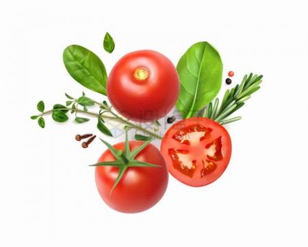 逼真的新鲜西红柿番茄和罗勒叶香料等美味美食png图片免抠矢量素材