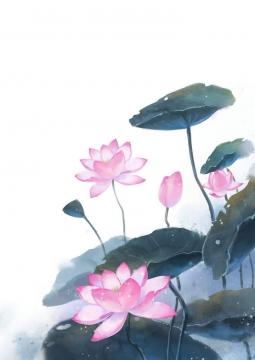 唯美彩色水彩画风格墨绿色的荷叶和盛开的粉色荷花夏天图片免抠素材