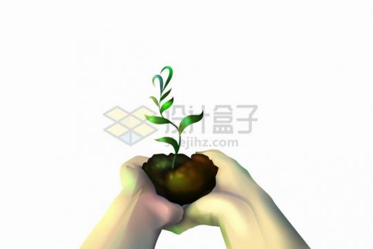 双手捧着泥土中一株发芽的小树苗png图片素材