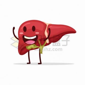 可爱的卡通肝脏人体器官组织png图片素材