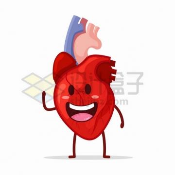可爱的卡通心脏人体器官组织png图片素材