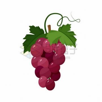 手绘红宝石葡萄png图片素材