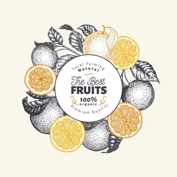 复古素描风格橙子水果圆形标题框图片免抠素材