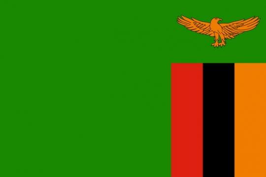 标准版赞比亚国旗图片素材