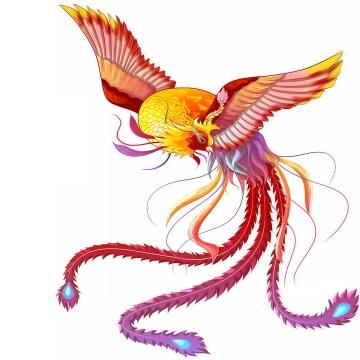 漂亮的五彩凤凰不死鸟png图片免抠素材