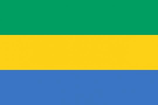 标准版加蓬国旗图片素材