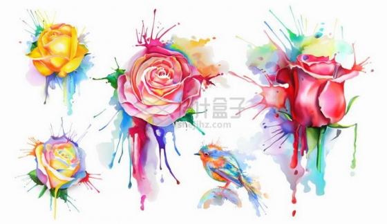 水彩画泼墨风格玫瑰花小鸟等png图片免抠矢量素材