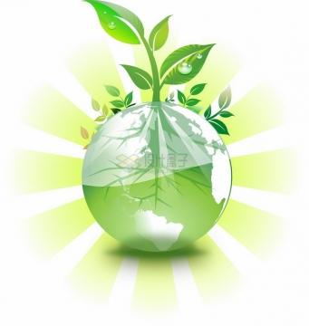 发光的地球上长出一颗嫩芽小树苗png图片素材