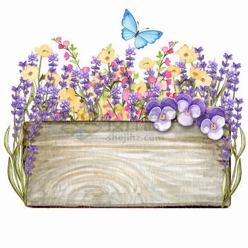 长方形木板和薰衣草蝴蝶兰花朵花卉装饰标题框水彩插画png图片免抠矢量素材