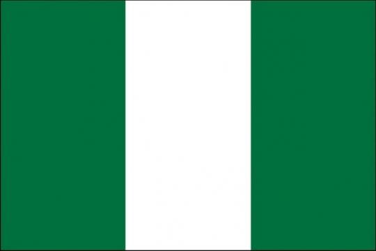 标准版尼日利亚国旗图片素材