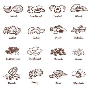 16款线条素描风格的椰子腰果等热带水果零食图片免抠素材