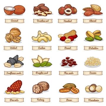 16款彩色手绘风格椰子腰果等热带水果零食图片免抠素材